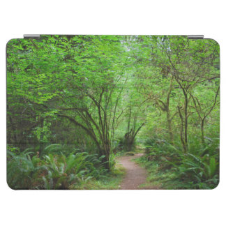 Trail in Redwood Forest iPad Air Cover