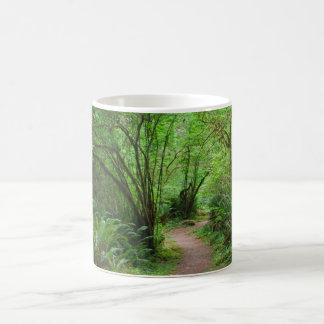 Trail in Redwood Forest Magic Mug