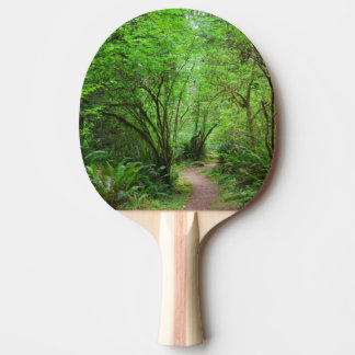 Trail in Redwood Forest Ping-Pong Paddle