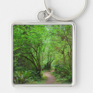 Trail in Redwood Forest Silver-Colored Square Keychain