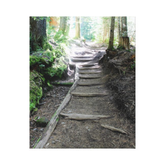 Trail in the Woods of Mt Rainier Canvas Print