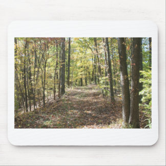 Trail of Tears Mouse Pad