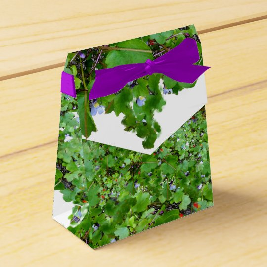 Trailing Ivy Party Favor Boxes