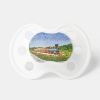 Train and Eiffel tower in Miracle Garden,Dubai Pacifier
