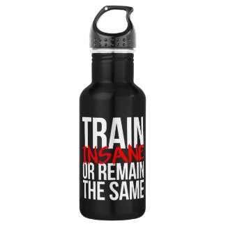 Train insane or remain the same 532 ml water bottle