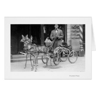 Trained Deer Harnessed to an Odd Sleigh on Wheel Card