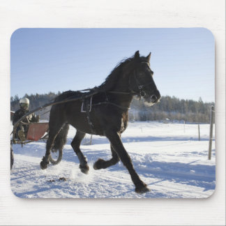 Training of horses in a wintry landscape, mouse pad