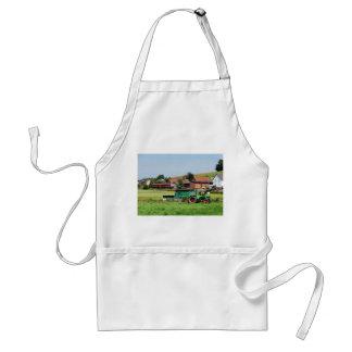 Tramcar in death living standard apron