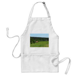 Tramcar with meadow field standard apron