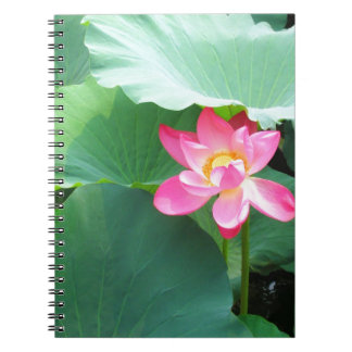 Tranquil Lotus Notebook