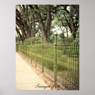 Tranquil Path print