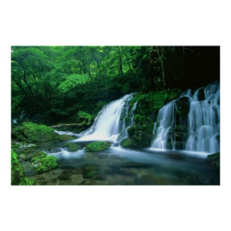 Tranquil Waterfall Poster