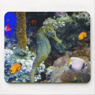Tranquility Down Under Mousepad