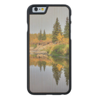 tranquility carved® maple iPhone 6 slim case