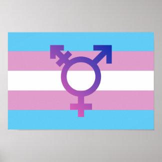 Trans Pride Flag Poster