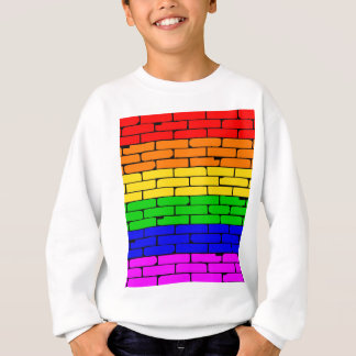 Transexual Rainbow Wall Sweatshirt