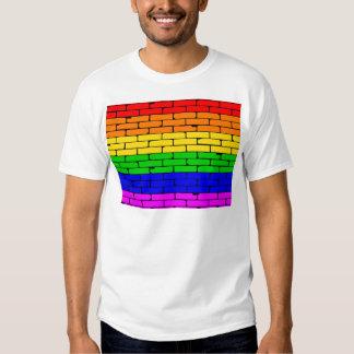 Transexual Rainbow Wall T-shirts