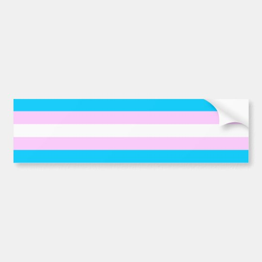 Transgender Flag Sticker