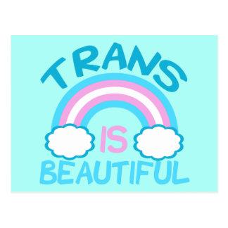Transgender is Beautiful Postcard