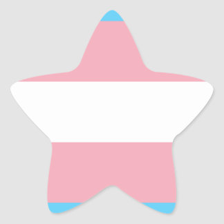 Transgender Pride Flag - LGBT Trans Rainbow Star Sticker