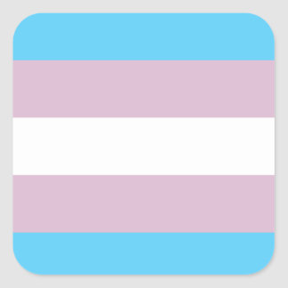 Transgender Pride Flag Stickers (Square)