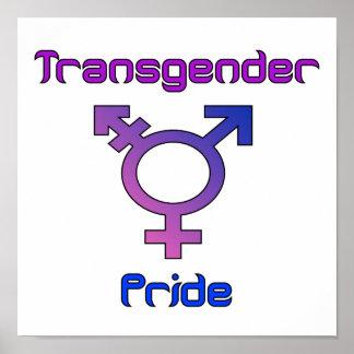 Transgender Pride Poster