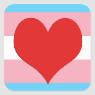 Transgender Pride Square Sticker