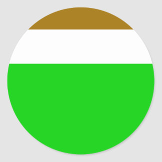 Transkei, South Africa flag Classic Round Sticker