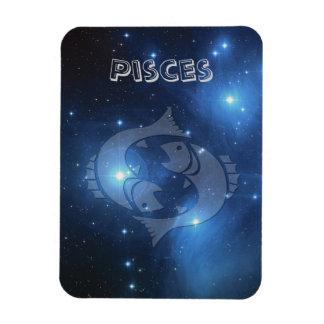 Transparent Pisces Magnet