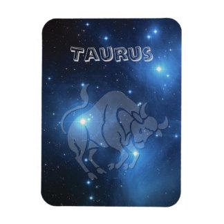 Transparent Taurus Magnet