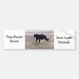 trap nueter return bumper sticker
