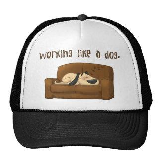 Travail comme un chien casquettes