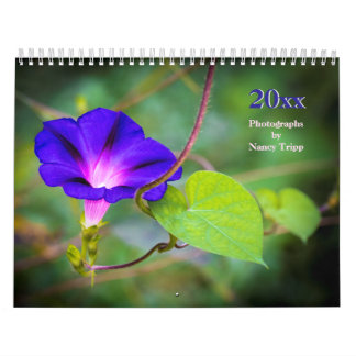 Travel and Floral Photography by Nancy Tripp Calendars