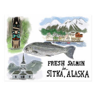 Travel Sketch Postcard: Salmon in Sitka, Alaska Postcard