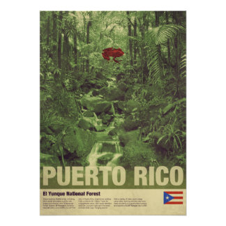 Travel to Puerto Rico: El Yunque Poster