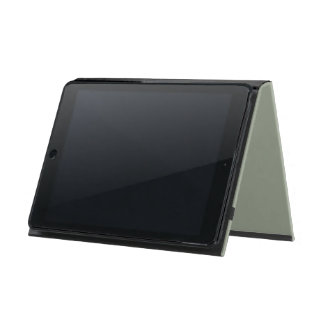 Traveling Lightly iPad Air Case with No Kickstand