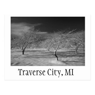 Traverse City Cherry Orchard Postcard