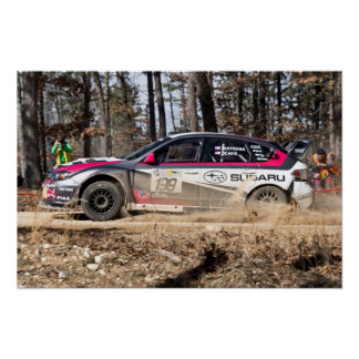 Travis Pastrana in the 100 Acre Wood Poster