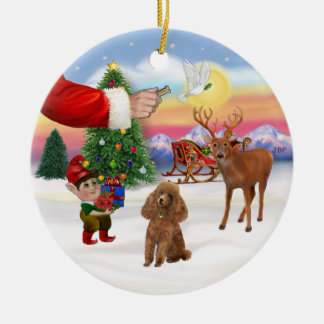 Treat for a Apricot Poodle (Toy) Round Ceramic Ornament