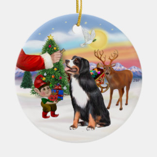 Treat for a Bernese Mountain Dog Round Ceramic Ornament