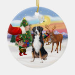 Treat for a Greater Swiss Mountain dog Christmas Ornaments