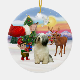 Treat for a Polish Lowland Sheepdog (#10) Ceramic Ornament