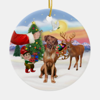 Treat for a Rhodesian Ridgeback Ceramic Ornament
