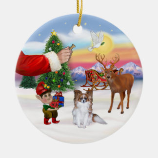 Treat for a Sable Papillon Ceramic Ornament
