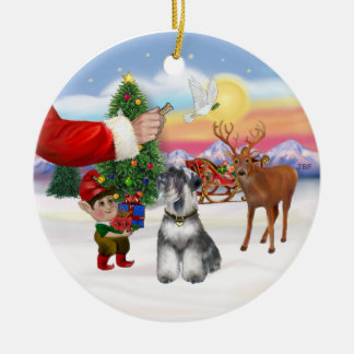 Treat for a Schnauzer (natural ears) Round Ceramic Ornament