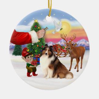 Treat for a Shetland Sheepdog (#7) Ceramic Ornament