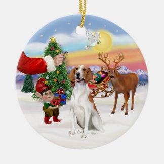 Treat for an American Fox Hound Ceramic Ornament