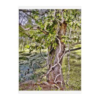 Tree Acrylic Wall Art