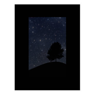 Tree against the starry night sky postcard