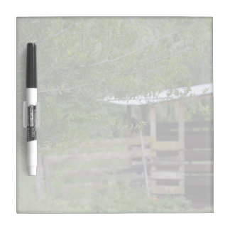 tree and old barn florida photo dry erase board